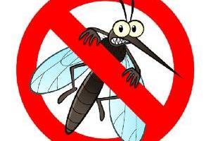 Szúnyoggyérítés földi 2021 09 21